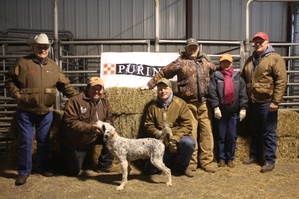 C S Pressure Test with Purina Rep Roy Pelton, handler Doug Ray, scout Stacy Perkins, and judges and reporter, Gordon Hazlewood, Peggy Herriage and Jerry Hailey